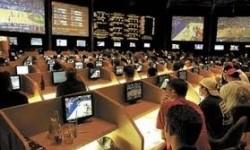 Live ставки на спорт в онлайн бумекерской конторе