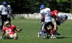 Прогнозы на спорт от профессионалов – выигрыш или обман?